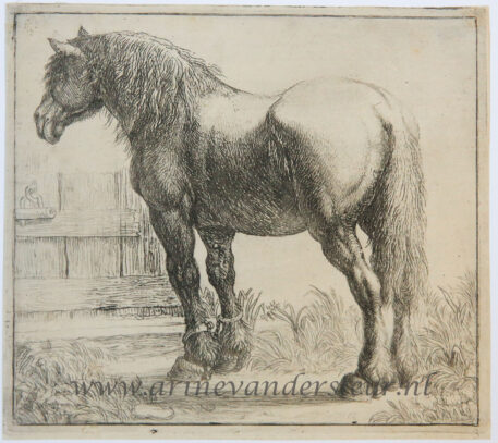 [Antique print, etching] Draught-horse next to a fence/Trekpaard naast een hek, 1600-1650.