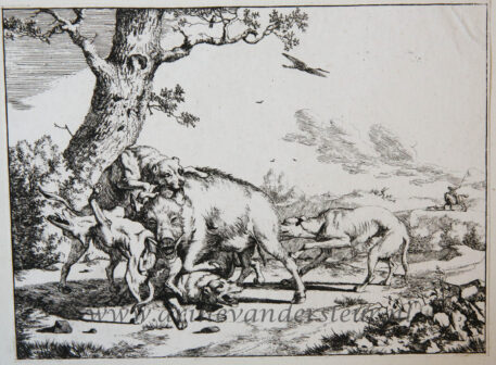 Hunting bulls, wolves, wild boars and bears [complete set of four etchings]/Jagende stieren, wolven en beren