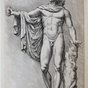 [Original etching/ets] Belvedere Apollo