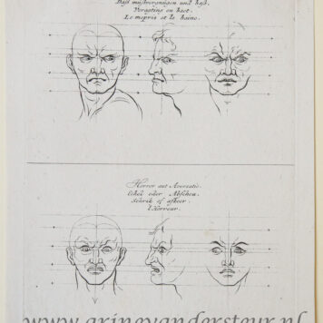 10 Original engravings re physiognomy: