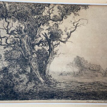 [Original etching] Trees in the meadow, 1908.