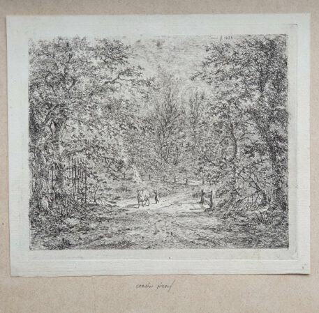 Print./ Prent. G.E. de Micault. The cow in the Bentheim forest. (state I)