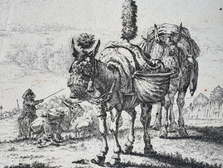 Print. after K. Dujardin, The two mules.