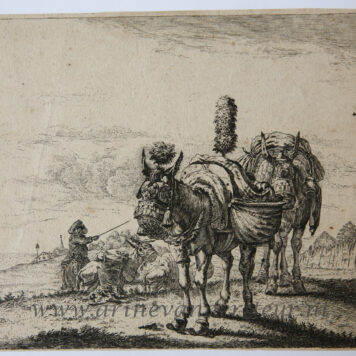 [Antique etching, ets] After K. Dujardin, The two mules, published before 1750. .