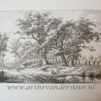 [Antique etching and engraving, ets en gravure] E.v. Drielst, after H. Schwegman, IN HET DRAAMSCHE.