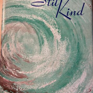 [FIRST EDITION] Die stil Kind by S.V. Petersen