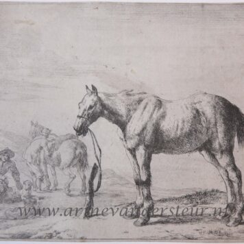 [Antique print, etching] Standing horse tied to a pole [set of 12 horses]/Vastgebonden paard.