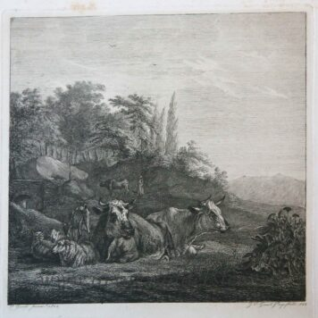 [Antique print, etching] Animals resting on a meadow / Rustende dieren.