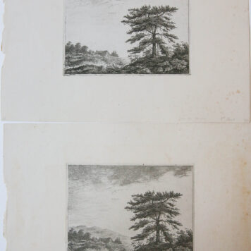 Two plates with trees
