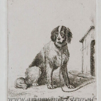 [Antique print, etching] A chained dog / Hond aan de ketting.