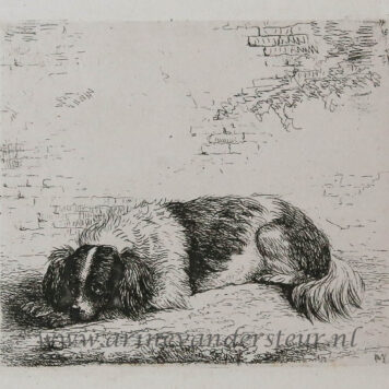 [Antique print, etching] A dog lying on the ground/ Hond ligt op de grond.