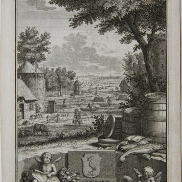 [Antique print, etching] Vue de Wyver a' la Haye (hofvijver Den Haag, The Hague), published 1806.